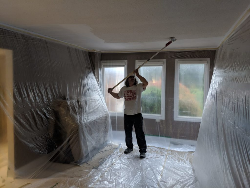 Ceiling Removal Process